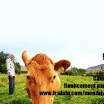 Auvergne-Rhône-Alpes Auvergne : Nouveau Monde, pionnière du financement participatif