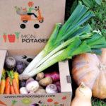 Cultiver ses légumes en ligne