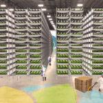Etats-Unis : La plus grande ferme urbaine verticale du monde