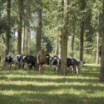 L'innovation au service de l'agro-écologie
