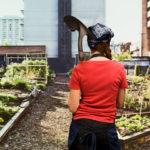 La bio crée des richesses de proximité non délocalisables