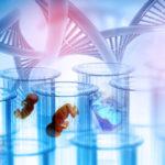 En Chine, l'inquiétante expansion des tests génétiques sur embryons