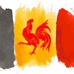 Belgique : La Wallonie a son Plan air-climat-énergie