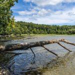 Pays de la Loire : De l'eau potable pour 40 000 consommateurs