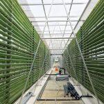 Nouvelle-Aquitaine : La trajectoire zéro carbone de La Rochelle