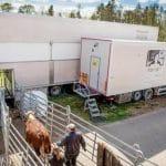 Bourgogne-Franche-Comté : Le Bœuf Ethique, nouveau label d'abattage